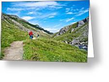 Hiking On Savage River Trail In Denali Np-ak    Greeting Card