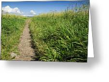 Hiking Path In Devon England Greeting Card