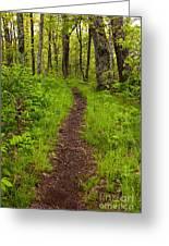 Hiking Through The Blue Ridge I Greeting Card