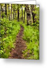 Hiking Through The Blue Ridge II Greeting Card