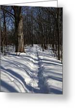 Hiking Trail Shadows Greeting Card