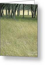Hill Country Calm Greeting Card