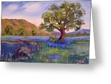 Hill Country Spring Greeting Card