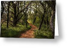 Hill Country Trail Greeting Card