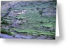 Hill Modified For Agriculture, Tetang Greeting Card