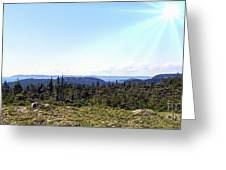 Hill View - Summer - Berry Picking Barrens Greeting Card