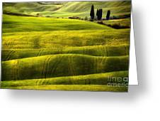 Hills Of Toscany Greeting Card