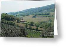 Hills Of Tuscany Greeting Card