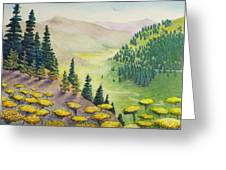 Hillside Of Yarrow Flowers With Pine Tress Greeting Card