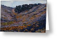 Hillside Sage Greeting Card