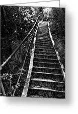 Hillside Stairs Greeting Card