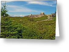 Hillside View Of Swissair Flight 111 Memorial In Whalesback-ns Greeting Card