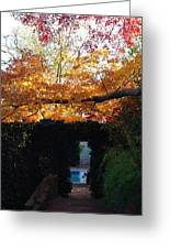 Hillwood Mansion Fall Garden Greeting Card