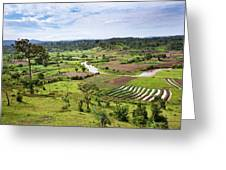 Hilly Landscape Of The Southern Ugandan Greeting Card