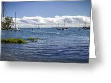 Hilo Bay Greeting Card