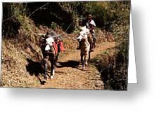 Himalayan Horseman - Nepal Greeting Card