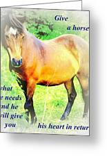 Care About A Horse And He Will Give You His Heart In Return  Greeting Card