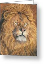 His Majesty - Detail Greeting Card