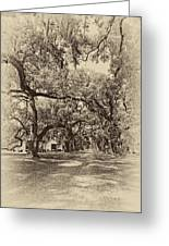 Historic Lane Antique Sepia Greeting Card by Steve Harrington