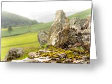 History And Nature. Wicklow. Ireland Greeting Card