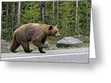 Hmmm .... What's On The Other Side Of The Road Today? Greeting Card