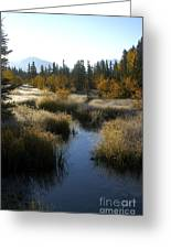 Hoar Frost And Stream Greeting Card