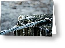 Hoar Frost At Sun Up Greeting Card