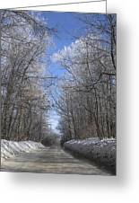 Hoar Frost On Campground Road Greeting Card