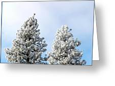 Hoarfrost 21 Greeting Card