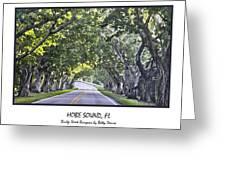 Hobe Sound Fl-bridge Street Banyans Greeting Card