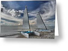Hobie Cats On The Caribbean Greeting Card