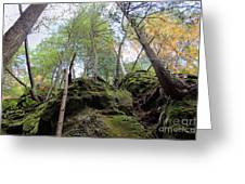 Hocking Hills Moss Covered Cliff Greeting Card