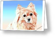 Hoku - A Former Shelter Sweetie Greeting Card