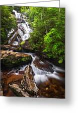 Holcomb Falls Greeting Card