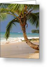 Holetown Beach Greeting Card