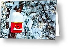 Holiday Birdhouse Greeting Card