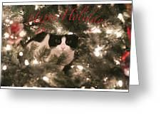 Holiday Card Greeting Card