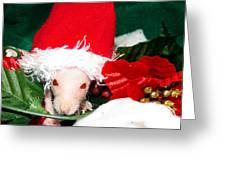 Holiday Cheer Greeting Card