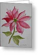 Holiday Flower Greeting Card