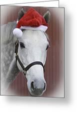 holiday horse Friendly Greeting Card