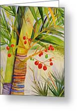 Holiday Palm Greeting Card