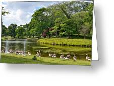 Holkam Park Greeting Card