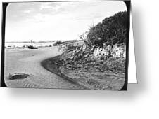 Holly Beach Now Wildwood New Jersey 1907 Vintage Photograph Greeting Card