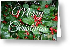 Holly Berries Merry Christmas Greeting Card