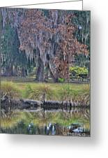 Holly Hill Park Greeting Card