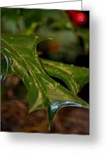 Holly Leaf Abstract Greeting Card