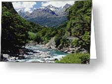 Hollyford River And The Eyre Range Greeting Card