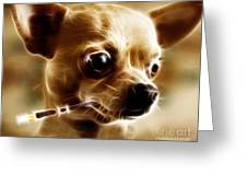 Hollywood Fifi Chika Chihuahua - Electric Art Greeting Card