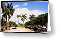Hollywood Florida Greeting Card