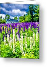 Holy Lupines Greeting Card